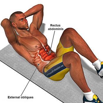 تقویت عضلات شکم با چند تمرین ساده