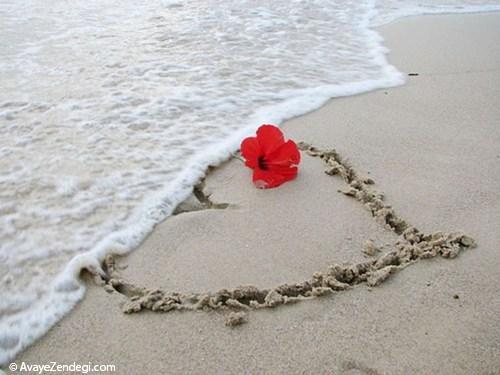 عشق را درد مگویی که بلایی بودست (هلالی جغتایی)