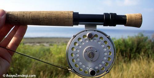 گام به گام تا تبدیل شدن به یک ماهی گیر حرفه ای