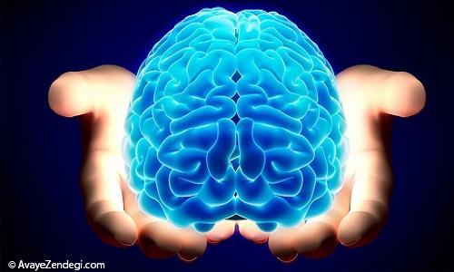حل معمای مدیریت احساسات توسط مغز