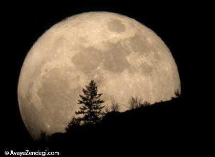 یکشب با قمر (شهریار)