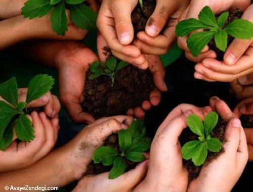 امسال برای «محیط زیست» 5 قدم بردارید!