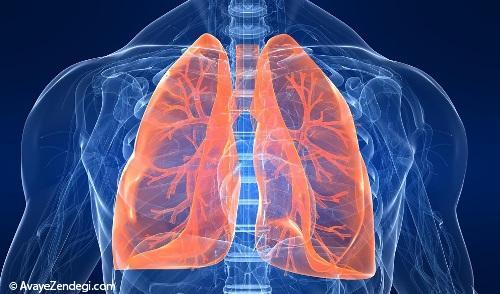 درمان بیماری های ریوی در طب سنتی